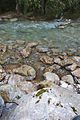 River Mali Rzav and Visocka Banja Spa in Serbia - 4283.NEF 18.jpg