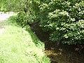 River Mint - geograph.org.uk - 183512.jpg