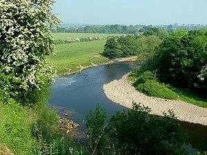 Brompton-on-Swale - River Swale near Brompton-on-Swale