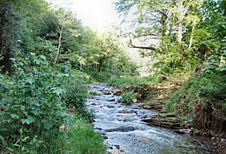 River Valency at Newmills - geograph.org.uk - 437373.jpg