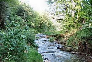 River Valency - River Valency at Newmills