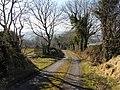 Road at Milltown - geograph.org.uk - 1749401.jpg