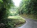 Road back to the Hunters Inn - geograph.org.uk - 917764.jpg