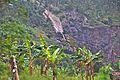 Road between Ruhengeri and Kigali - Flickr - Dave Proffer (4).jpg
