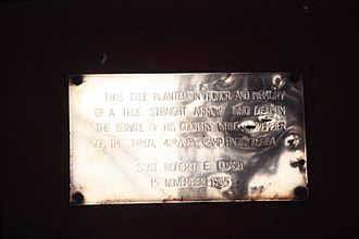 Camp Page - A memorial plaque to SSgt Robert E. Quash, who died at Camp Page, near Chuncheon, south Korea, on November 15, 1965. A tree was planted in his honor.