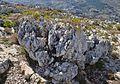 Roca del massís del Montgó.jpg