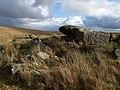 Rock above Hollowcombe Bottom - geograph.org.uk - 1592489.jpg
