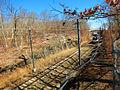 Rocky Neck State Park NEC Amtrak IMG 6184 (2) 6x8.jpg