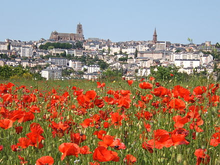 The north and south sections of the meridianal survey met at Rodez cathedral, seen here dominating the Rodez skyline Rodez-coquelicots480.JPG