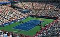 Rogers Cup Semifinal 2009.jpg