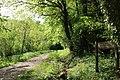 Route forestière de Fond d'Enfer.jpg