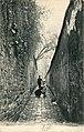 Rue Berton, Paris (c.1905).jpg