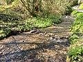 Ruisseau a glanville.jpg