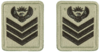 SANDF Rank Insignia Staff Sergeant embossed badge.png