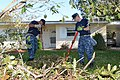 Sailors clean up debris around base housing on Naval Station Mayport. (37223838665).jpg