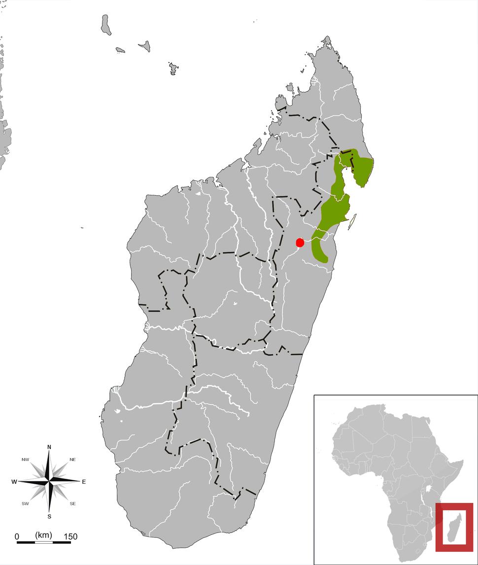 Salanoia range