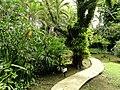 Sankyo Garden - DSC01277.JPG