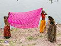 Sari drying (8029711973).jpg