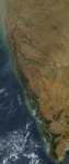 Satellite Picture of the Western Ghats & Indian West Coast.png