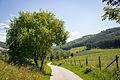 Sauerland-Landschaft im Sommer (14652091457).jpg