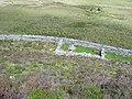 Sheepfold - geograph.org.uk - 446087.jpg