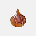 Shell Amulet MET 10.130.2436 EGDP021795.jpg