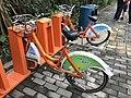 Shenzhen Public Bicycles near Xili Lake Station.jpg