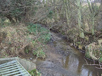 Shire Brook - Shire Brook as it runs through the nature reserve. The stream from Birley Spa flows in on the left.