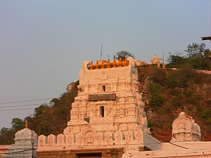 Srikalahasteeswara temple - The shrine of Amman located parallel to the Shiva shrine