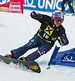 Siegfried Grabner FIS WCup 2012.jpg