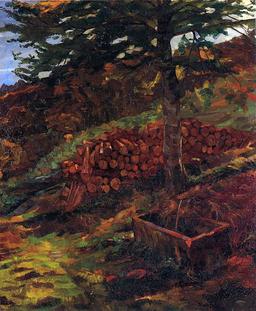 Studnia Zygfryda w Odenwaldzie (1902)
