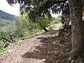 Sierra de los Tajos del Sabar (7232263494).jpg