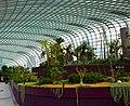 Singapore, Gardens by the bay - panoramio (11).jpg