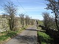 Skellgill Lane - geograph.org.uk - 376491.jpg