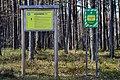 Skulyn Kovelskyi Volynska-Sosnyna-1 nature monument-boards.jpg