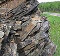 Slate (Knife Lake Formation, metamorphism at 2.7 Ga, Neoarchean; Rt. 135 roadcut, Gilbert, Minnesota, USA) 11 (23139943949).jpg