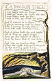 Songs of Innocence and of Experience, copy A, 1795 (British Museum) 46-49 A Poison Tree.jpg