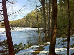 Southern Breakneck Pond on Nipmuck Trail facing north on the last day of winter