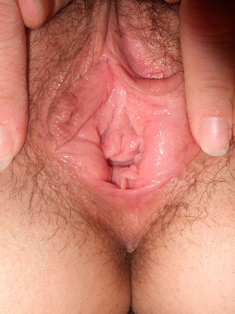 Lick it lick it lick it