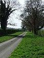 Spring green - geograph.org.uk - 778146.jpg