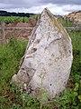 Standing Stone - geograph.org.uk - 479877.jpg