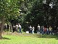 Starr-120508-5614-Eucalyptus sp-HBT with HISC Council-MISC Piiholo-Maui (24774610309).jpg