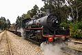 Steam locomotive 1072, Zig Zag railway, NSW, Australia - 2.jpg