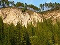 Steep right bank of a dry river valley Kishertka.Крутой правый берег сухой долины реки Кишертка. Пермский край - panoramio.jpg