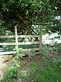 Stile beside Bridleway - geograph.org.uk - 833454.jpg