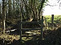 Stile into Morley's Brake - geograph.org.uk - 690159.jpg