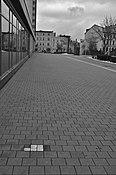 Stolpersteine in Cottbus 6 (Cottbus).jpg