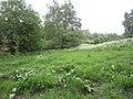 Stortplaats Sparrendal (31253161055).jpg