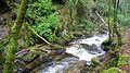 Stream - panoramio (22).jpg