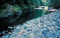 Stream in the Grassy Knob Wilderness, Rogue River Siskiyou National Forest (23916527965).jpg